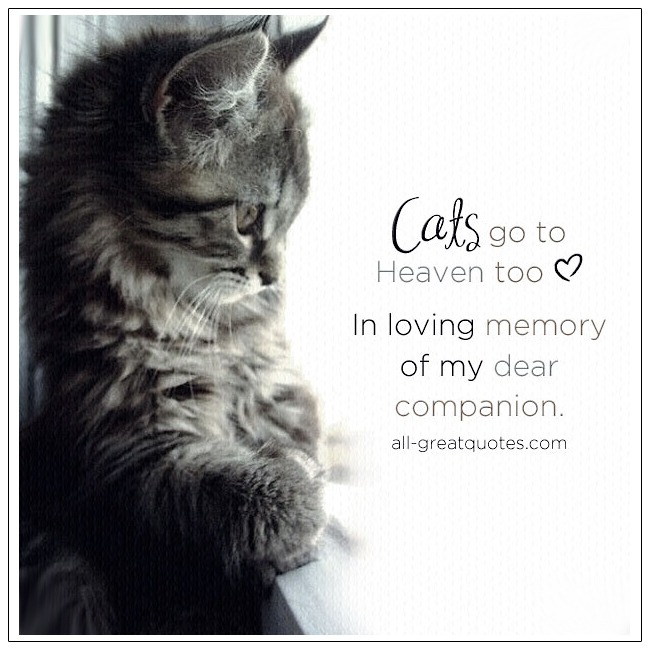Loss Of Cat-Quotes About Cat Loss Quotes