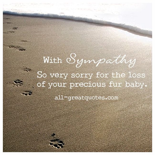 Loss Of Pet Sympathy Quotes