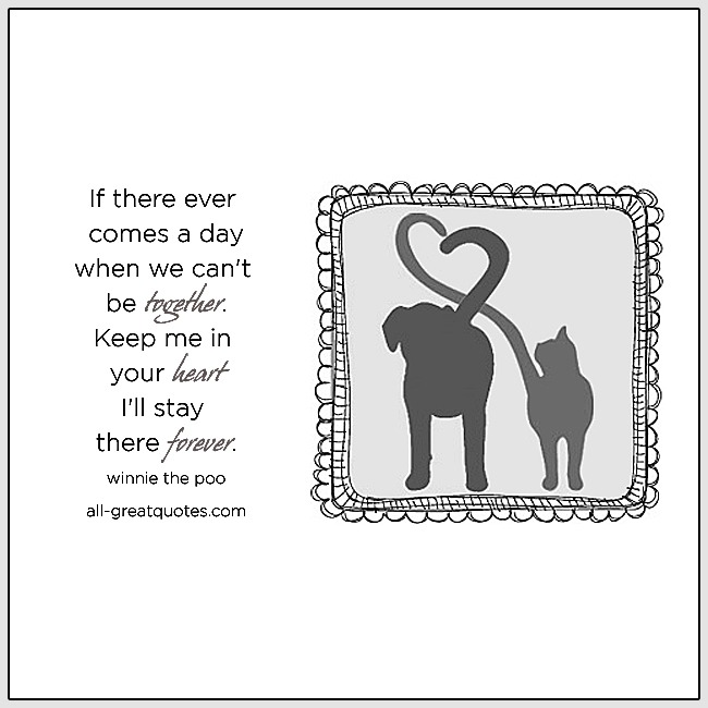 pet loss quotes about pet loss