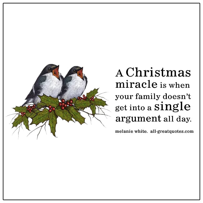 Christmas-Miracle-Family-Doesnt-Argue-All-Day-Funny-Christmas-Quote