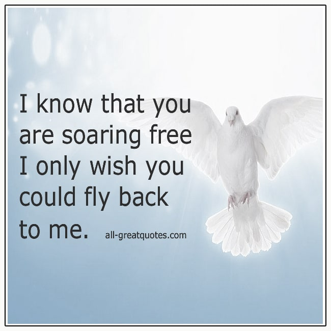 I Know That You Are Soaring Free Grief Loss Verse