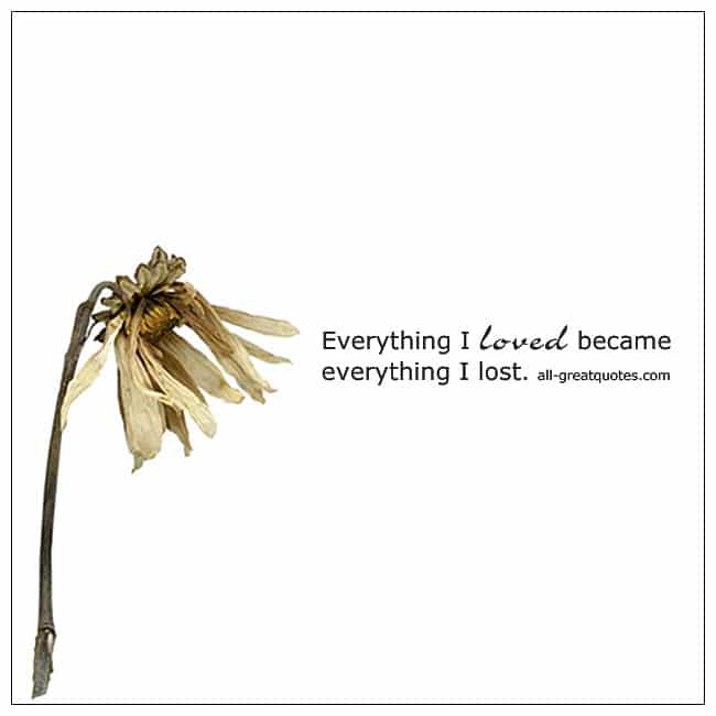 Everything I Loved Became Everything I Lost Quote